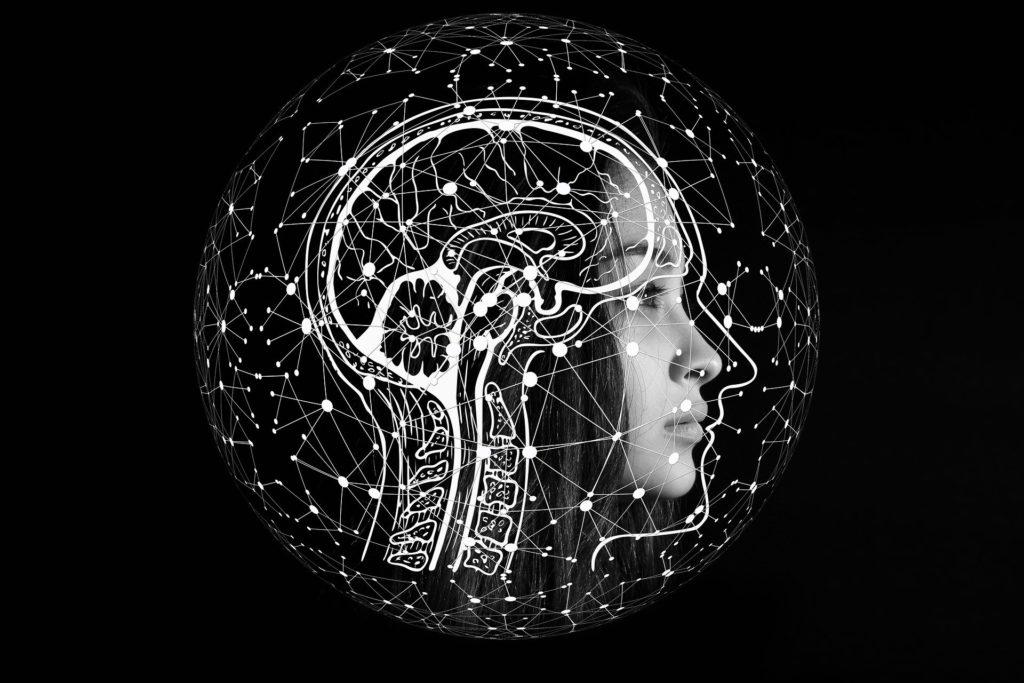 頭がいいってどういうこと?知能の三頭理論