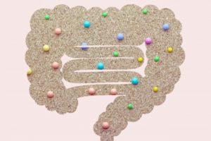 腸内細菌の驚くべき能力